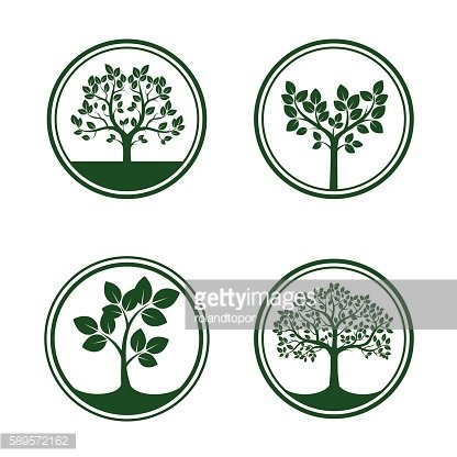 Set of green vector trees in borders.