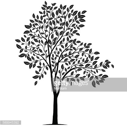Tree with leaves silhouette vector
