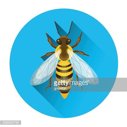 Bee Honey Insect Apiary Icon