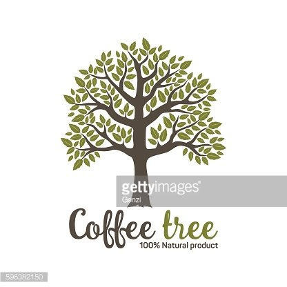 Hand drawn graphic coffee tree with green leaves. Vector illustration.