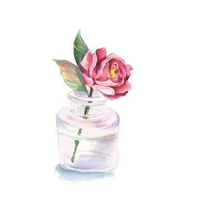 Flower In A Glass Watercolor Illustration Premium Clipart