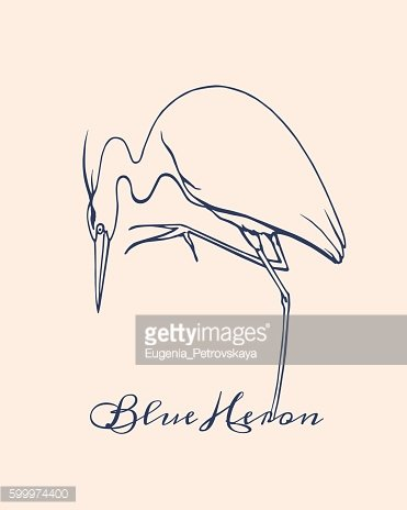 Hand drawn heron