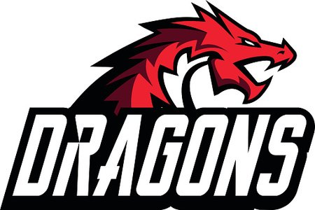 Creative dragon logo template. Sport mascot design.
