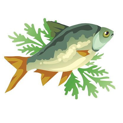 Cooked Fish With Dill Vector Icon Food Clipart Image