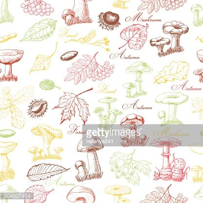 Seamless pattern with colored forest plants and mushrooms