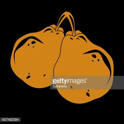 Two orange simple vector pears, ripe sweet fruits illustration.