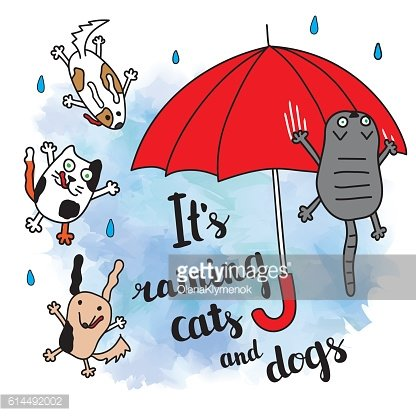 'It's raining cats and dogs' autumn card.