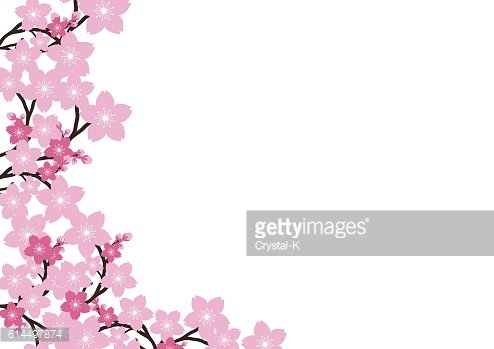 Pink Flower Background Clipart