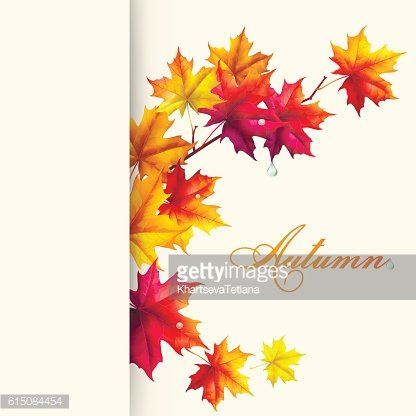 Autumn background. Leaves of maple.