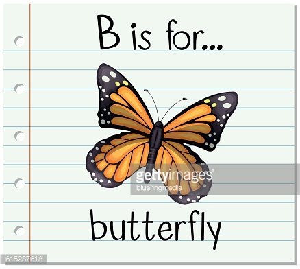 Flashcard letter B is for butterfly