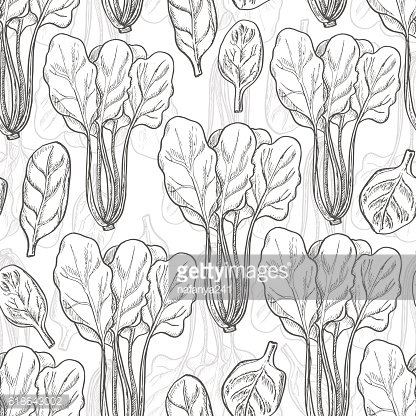 Seamless pattern with spinach
