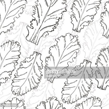 Seamless pattern with lettuce