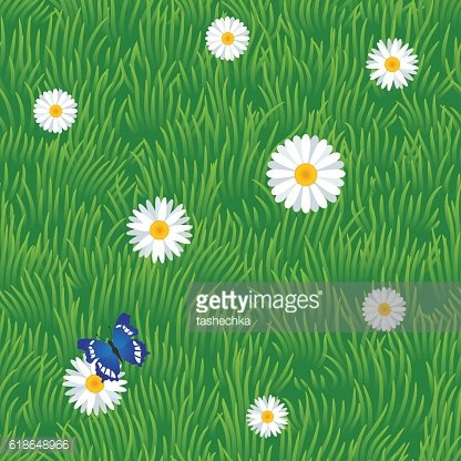 Grass seamless pattern with chamomiles and butterfly