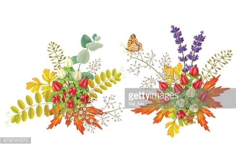 Autumn bouquets with berries and butterfly