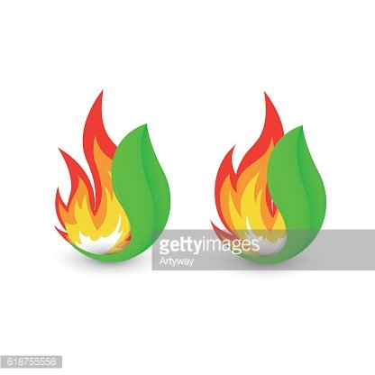 Isolated abstract fire logo. Flame in leaf logotype. Bushfire icon