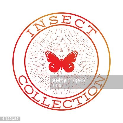 Insect collection orange round label