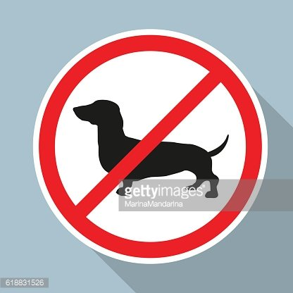 No Dogs allowed sign on blue background.