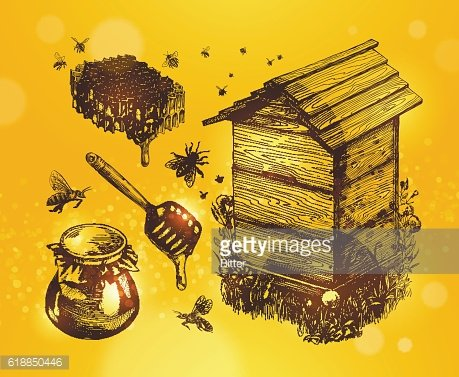 Honey, mead, beekeeping. Hand drawn apiculture sketch vector illustration