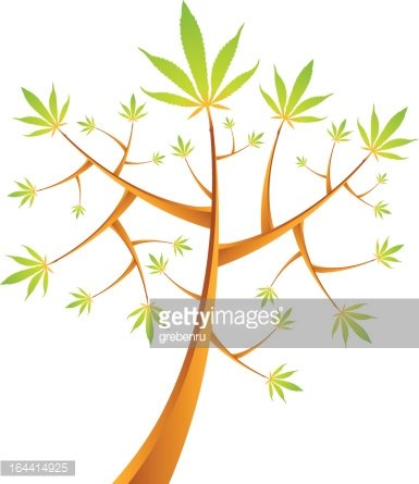 Cannabis tree vector illustration