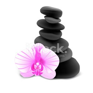 Orchid And Stones - Vector Illustration