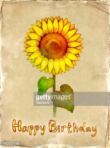 Birthday Card With Drawing Of Sunflower Premium Clipart