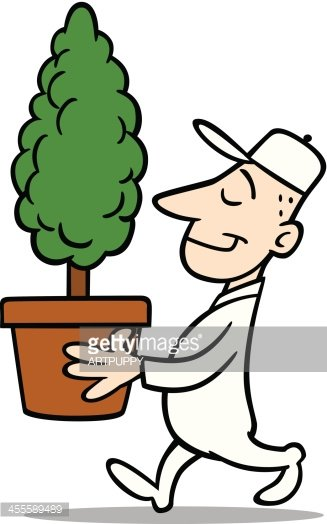Man Carring A Small Tree