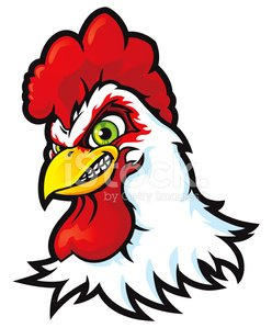 Extreme Sport Rooster
