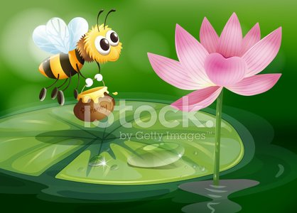 Bee with a pot of honey above waterlily
