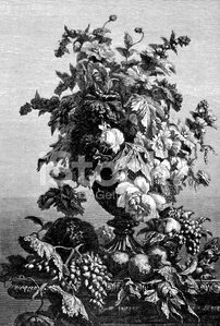 Antique illustration of fruit and flowers still life