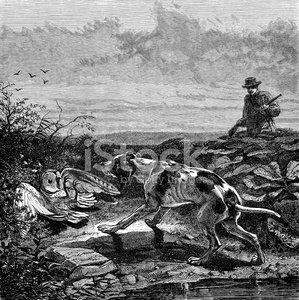 Antique illustration of hunting scene