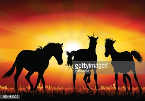 Wild Horses Png & Free Wild Horses.png Transparent Images #137698 - PNGio