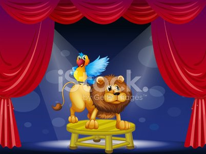 Circus showing the lion and parrot