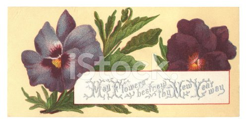 Victorian New Year card with pansies, 1877