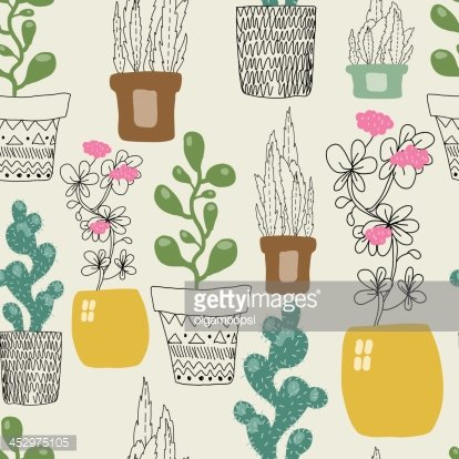 Colorful house plants isolated on white background Clipart   k53408311    Fotosearch