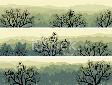 Horizontal banners of green forest with nest in tree.