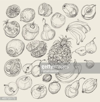 Vector illustration of tropical fruit