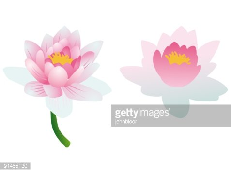 Lotus flowers complex and simple premium clipart clipartlogo lotus flowers complex and simple order source file mightylinksfo
