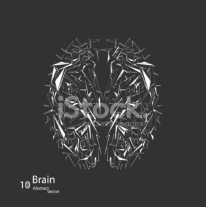 Creative concept of the human brain