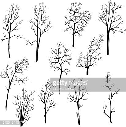 Branch clipart page, Branch page Transparent FREE for download on  WebStockReview 2020