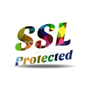 SSL Protected Colorful Vector Icon Design