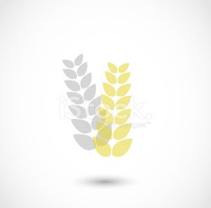 Cereal, wheat icon vector