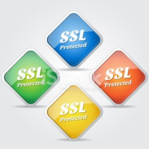 SSL protetta colorato Vector Icon Design