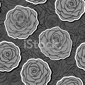 beautiful black and white seamless pattern in roses with contour