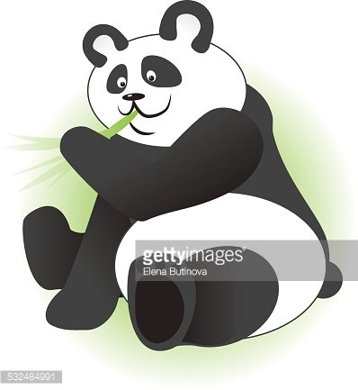 Cute panda eating bamboo branch