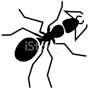 vector ant in black and white