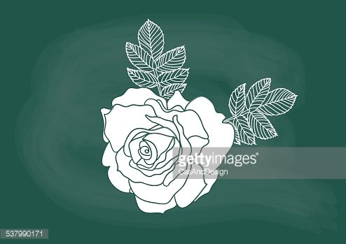 Blackboard With Flower, Nature, Flower, Black PNG and Vector with  Transparent Background for Free Download