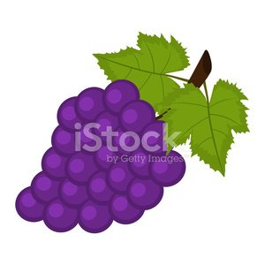 Bunch of Grapes ON A White Background premium clipart ...