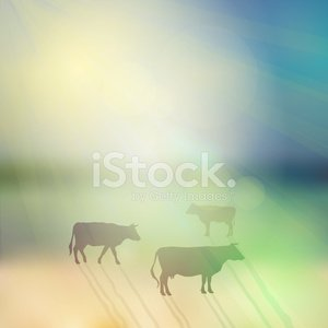 cow set silhouette on sunny sky and grass background. Vector
