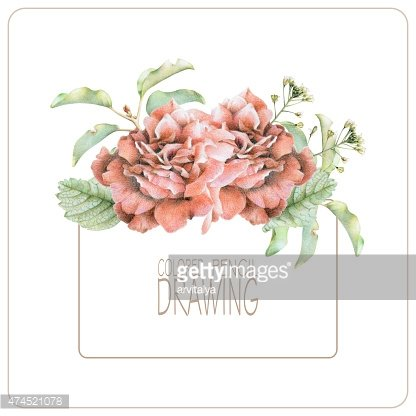 Background with beautiful spring flowers and plants
