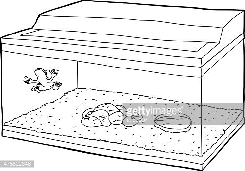Outline Of Frog In Fish Tank Clipart Image